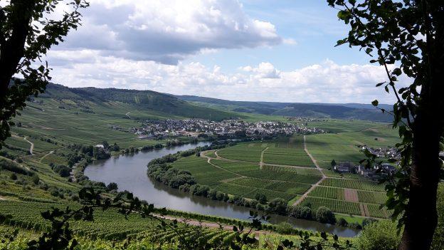 Uitzicht op Trittenheim